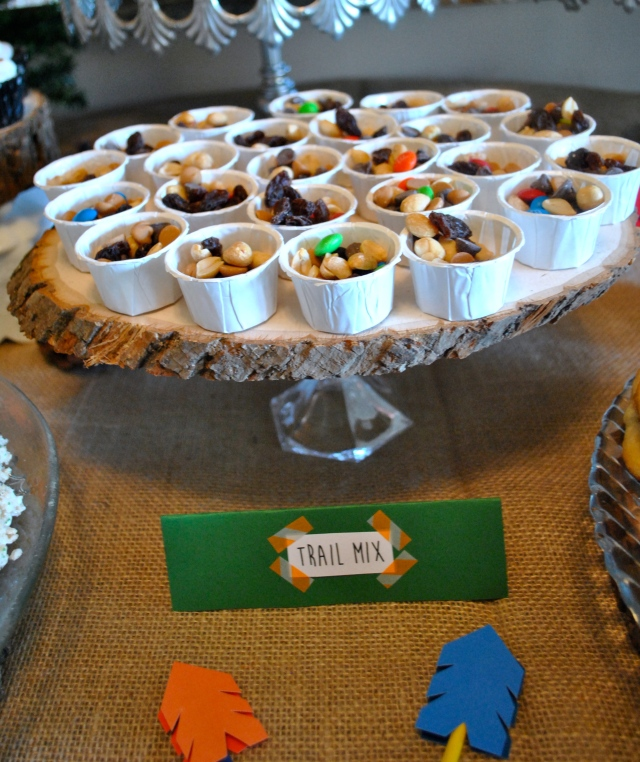 woodsy camping theme dessert table