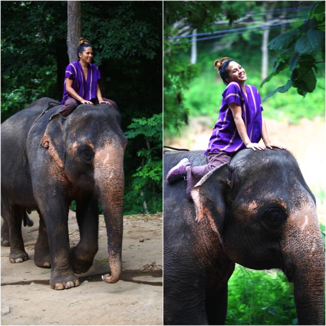 jungle style elephant farm thailand