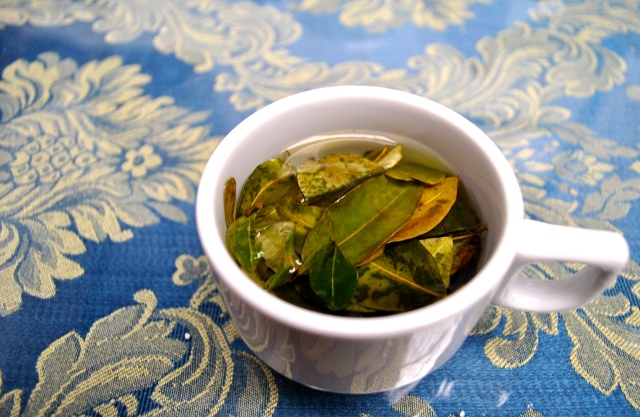 Coca Tea Leaves Travel Peru Cusco