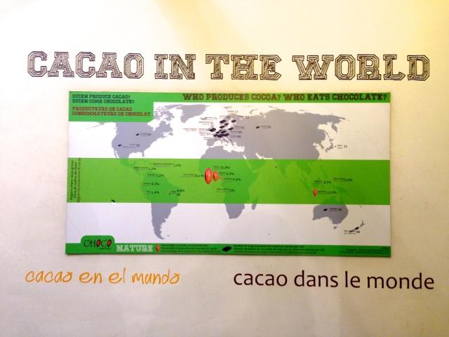 Cocoa Cacao Museum Cusco Cuzco Peru